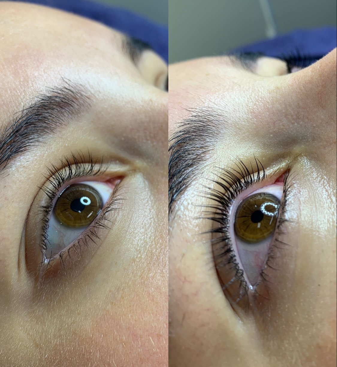 Before & After Photos Eye Lash Lifts Sydnehy